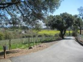 California Rivers Wine Tours