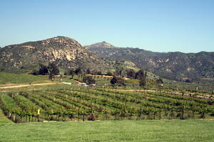 San Diego - California wineries