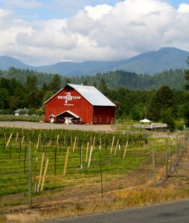 Bridgeview Vineyard and Winery