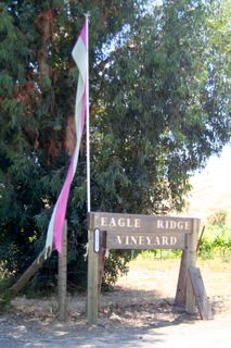 Eagle Ridge Vineyard