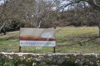 Minassian-Young Vineyards