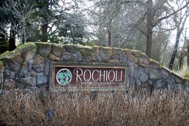 Rochioli Vineyards and Winery