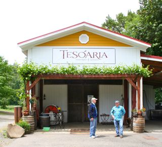 TeSoAria Vineyard