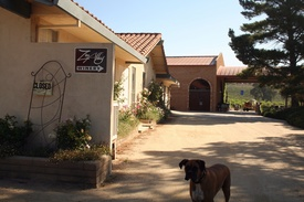 Zin Alley Winery