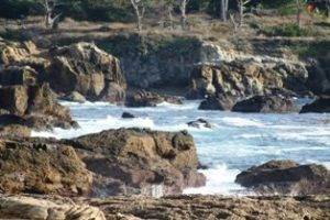 Point Lobos Ocean View