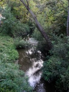 San Luis Creek - Bob Jones Trail