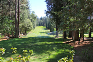 Forest Meadows Golf Course