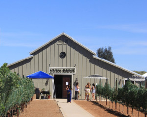 Cuda Ridge Winery