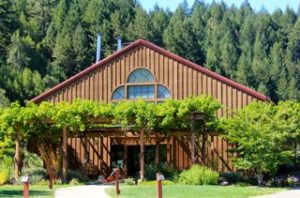 mendocino winery