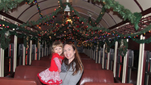 Santa Train Sunol