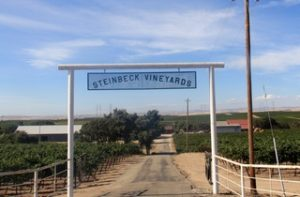 Steinbeck Vineyards