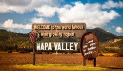 Amazing Napa Valley Wine Tour