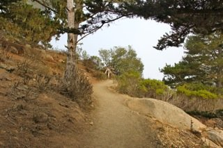 Black Hill Trail