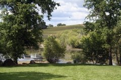 Best wineries for picnics
