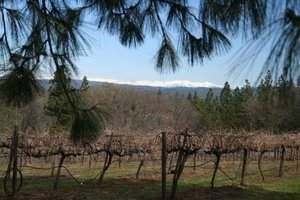 Sierra Foothills - California Wine Tour
