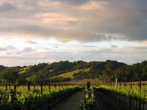 Sonoma County Hotels