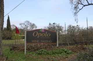 Opolo Vineyard