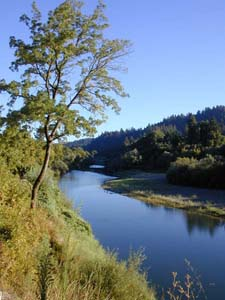 Scenic Tours of the Russian River