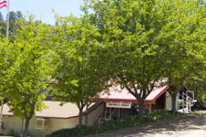 Butterfly Creek Vineyard and Winery