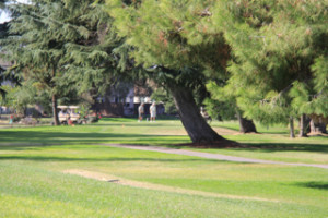 Elkhorn Golf Course Stockton