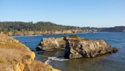 Northern Coastal Wineries – The Time to Taste is Now