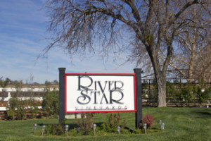 River Star Vineyards
