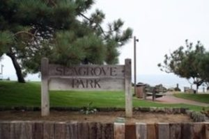 Sea grove Park Del Mar, CA
