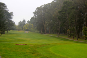 Santa Cruz Golf Courses