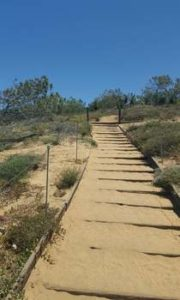 Guy Fleming Trail at Torrey Pines Reserve