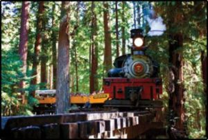 Roaring Camp Steam Train Santa Cruz